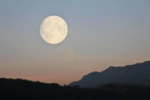 tt-moon